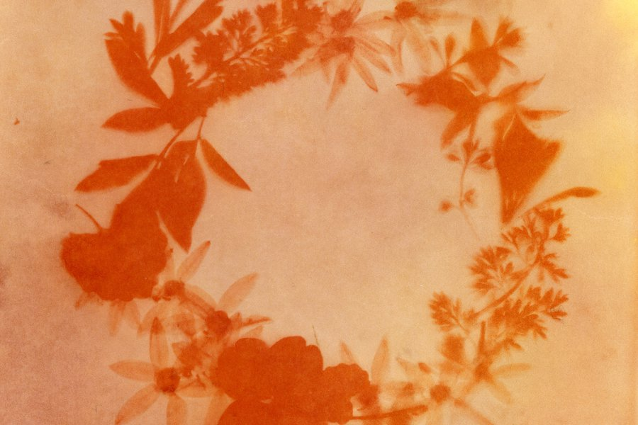Anthotypes: Printing with Spices and Vegetables - Online image