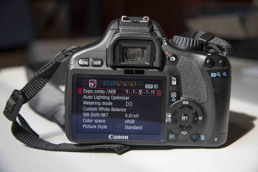 Intermediate DSLR Photography image